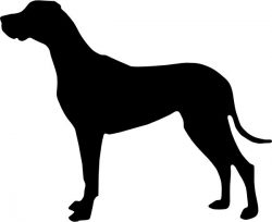 Great Dane file .cdr and .dxf free vector download for Laser cut plasma