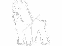 Basic Poodle