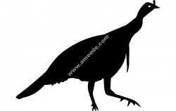 Birds Silhouette 2