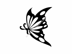 Borboleta 13 57×85 (Butterfly)
