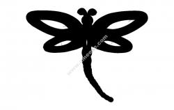 Dragonfly Single