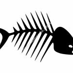Fish Bones