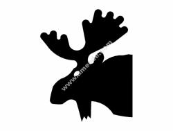 Moose 3b Head