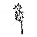 Plant Silhouette