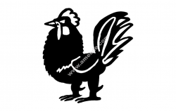 Rooster Vector