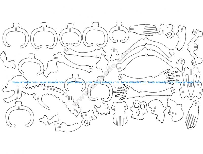 Skelett 3D Puzzle