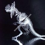 Ceratopsier acrylic
