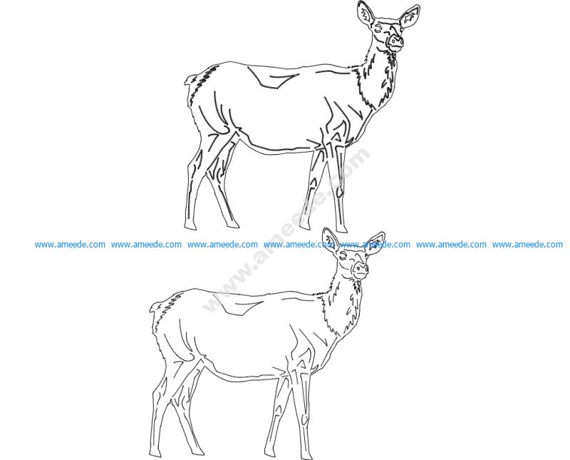Animals 2.13