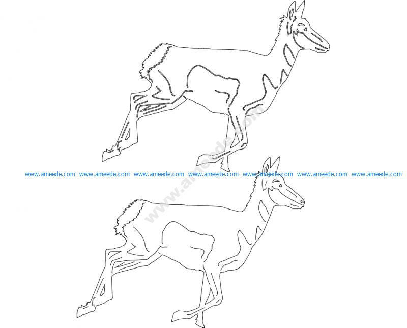 Animals 2.4
