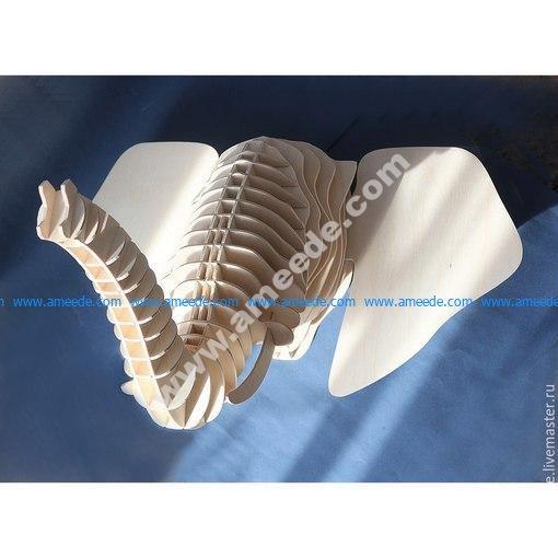 Elephant head 10mm