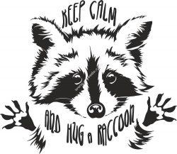 Funny Touching Raccoon Wants Hug Cuddle Vector