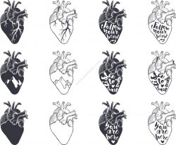 Heart Vector Set