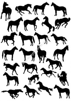 Horses Silhouette Vector Pack