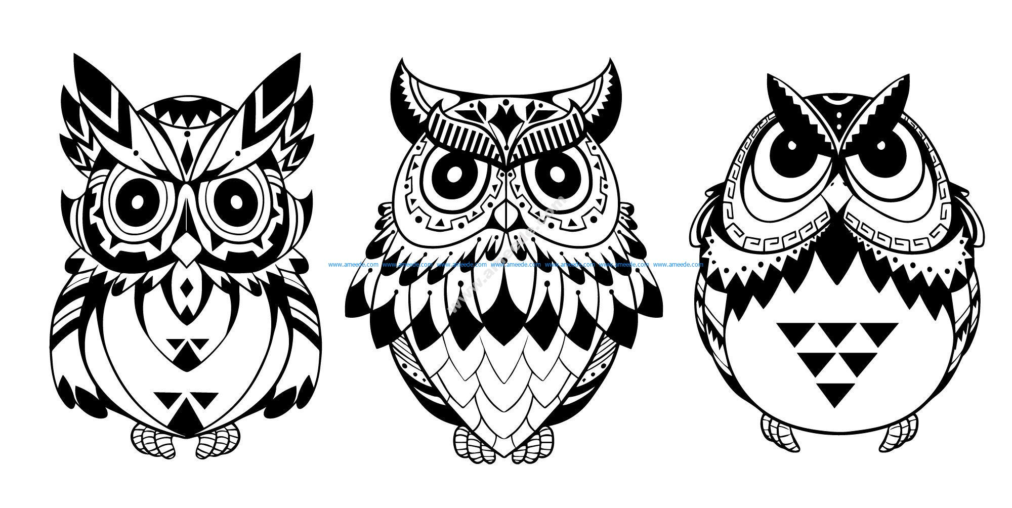 Owls Vector Art