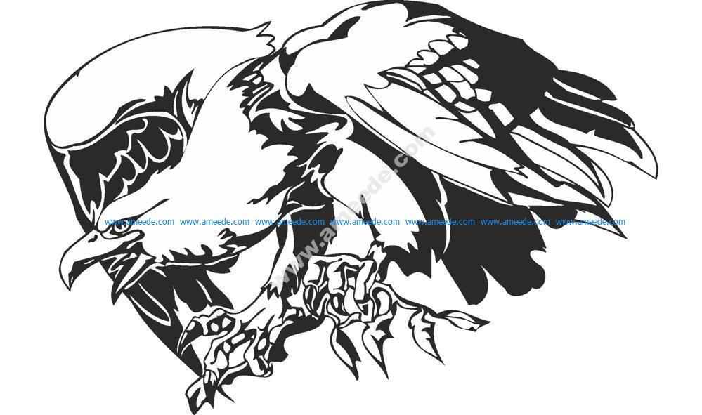 Predatory Bird Eagle Vector