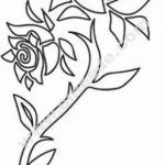 Rose Flower Abstract Design