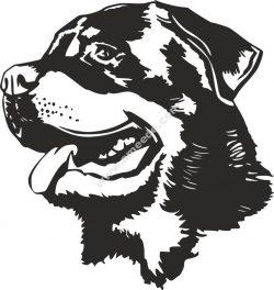 Rottweiler Dog Head Black White Vector