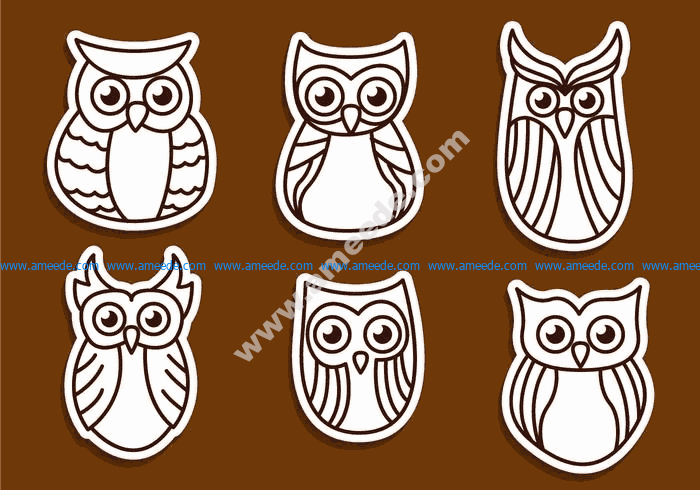 Sovy Owls