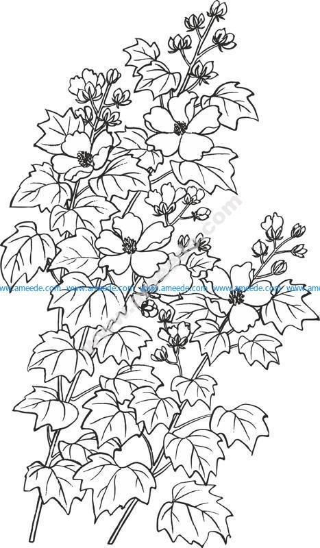 Vector Baimiao Hibiscus Flowers