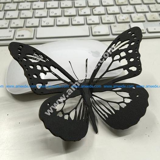 Vector Cutout Butterfly