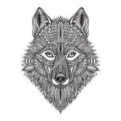 Wolf Face Vector Art