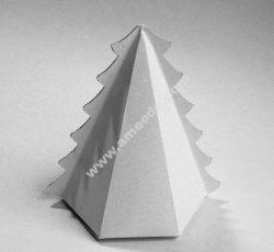 New year fir