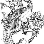 Phoenix and flower