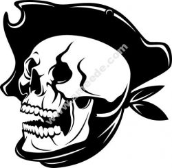 Pirate Skull and hat vector