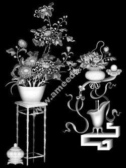 Chrysanthemum BMP