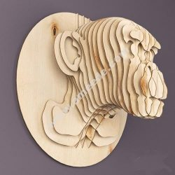 Monkey Head Plywood