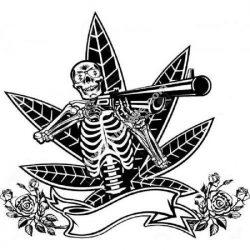 Skeleton with shotgun cannabis roses