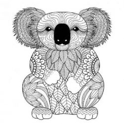 Zen koala