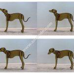 Laser Cut Dog