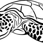 Sea turtle symbol of perseverance