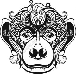 Monkey as a symbol of the new year 2016