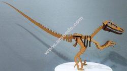 Raptor Dinosaur Velociraptor