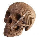 assembly skull