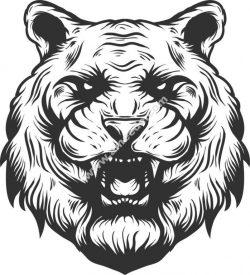tiger angry