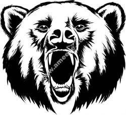 Bear season vector