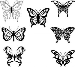 Corel collection of beautiful butterflies designed