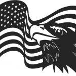 Eagle symbol of the united states of america