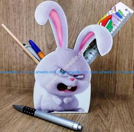 Rabbit pen case