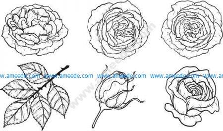 Rose pattern set