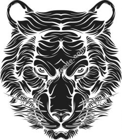 Tiger vector art