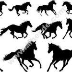 Horse vector pattern