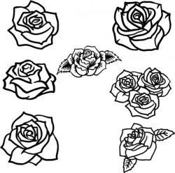 collection of beautiful rose flower patterns