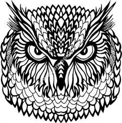 floral owl vector art