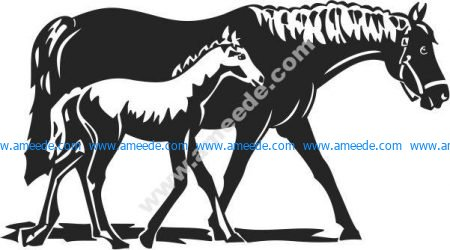 mother horse and child