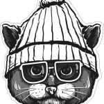 stylish cat with hat and glasses