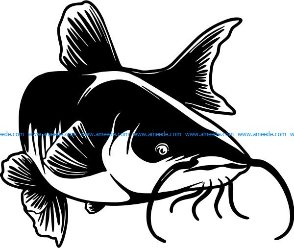 vector illustration of pangasius fish